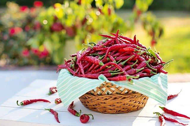 chili är ett vanligt ämne i fettförbränningstabletter